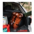 Topo Designs Klettersack Backpack 22L Clay in the bag of a car